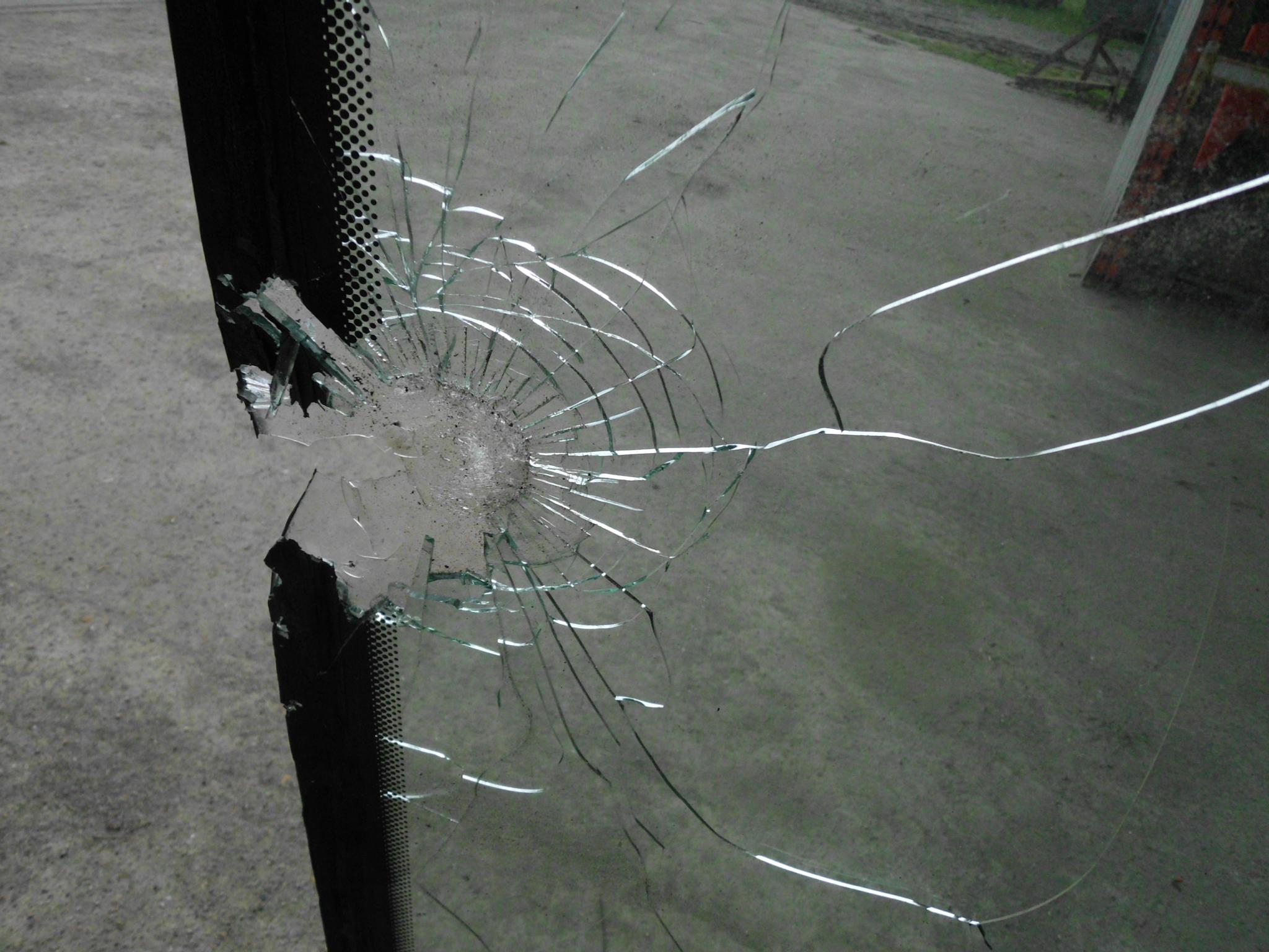 Ein Geschoss durchschlug die Scheibe der Schlepperkabine und verletzte zwei Insassen. Foto: SVLFG