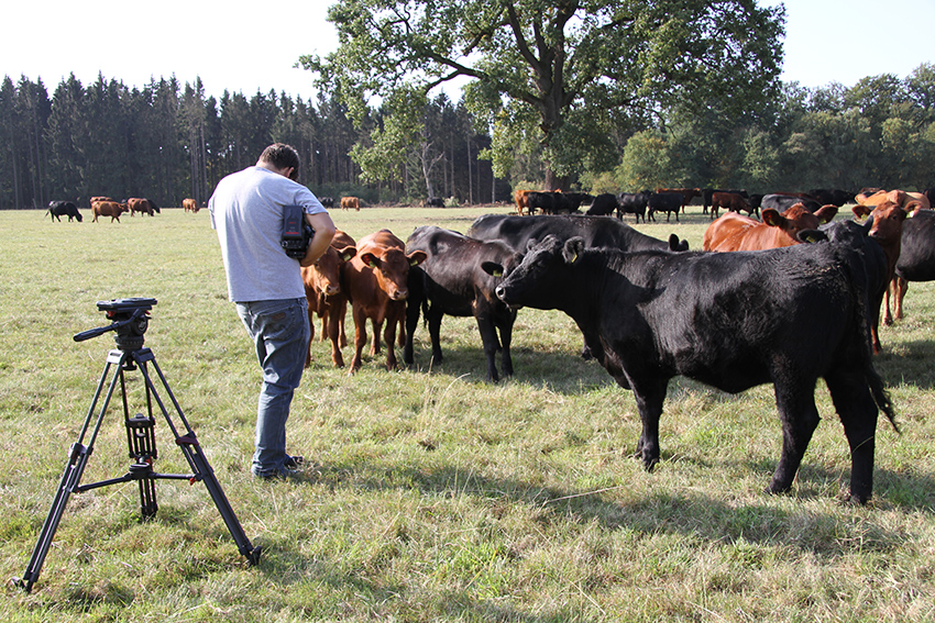 Kameramann während der Dreharbeiten