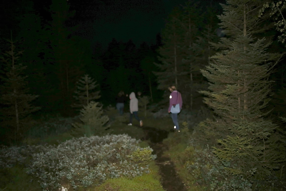 Geführte Nachtwanderung
