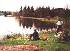 Angeln am Kaltenbrunner See