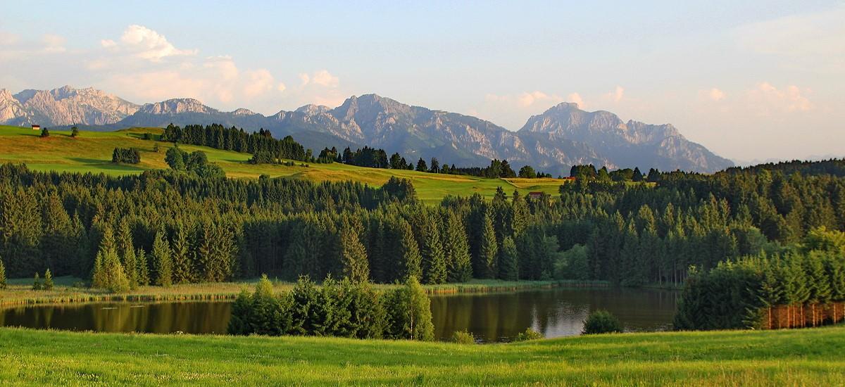 Blick auf den Kaltenbrunner See